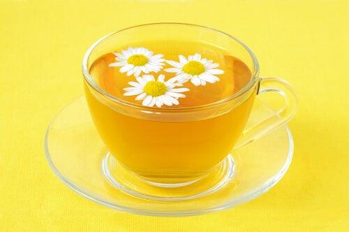 Лайката: естествено лечение на хемороиди