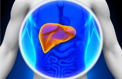 8 храни за прочистване на черния дроб
