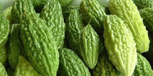 Горчива тиква: Изследванията показват, че това растение може да лекува рак и диабет