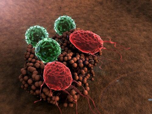 5 симптома  за отслабена имунна система