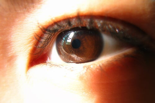 Хората с кафяв цвят на очите може да имат проблеми с щитовидната жлеза.