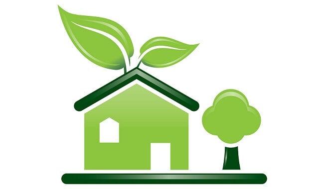 направете си сами органичен прах за пране и пощадете природата