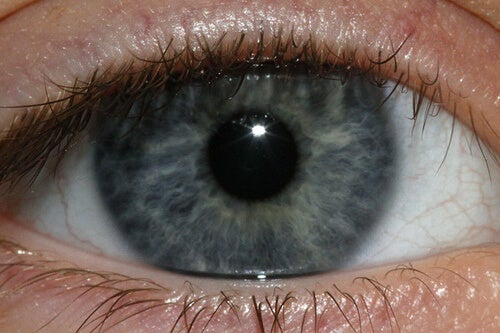 Хората със син или сив цвят на очите са предразположени към проблеми с гърлото.