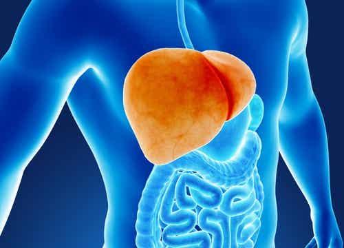 6 навика, които увреждат черния ви дроб