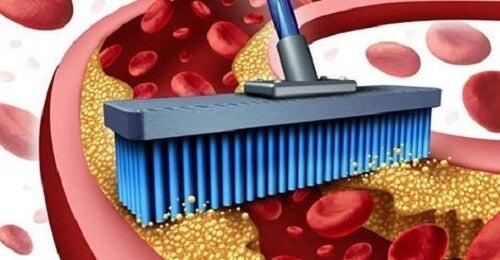 10 храни за прочистване на артерии и вени