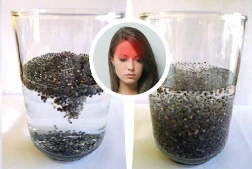 Най-добрите семена за лечение на мигрена