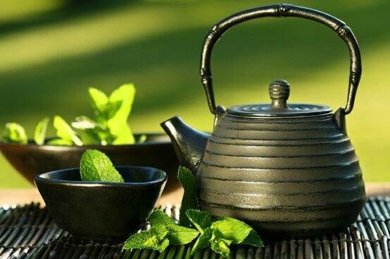 зеленият чай е основна част от японската диета