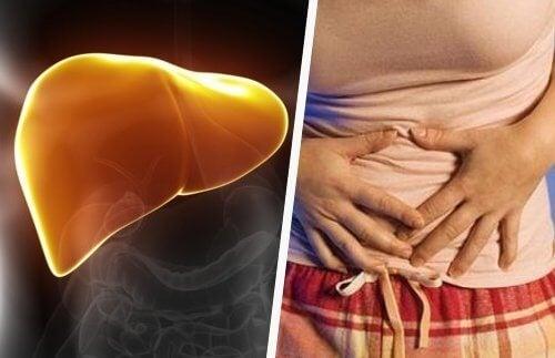възстановяване на черния дроб с натурални средства