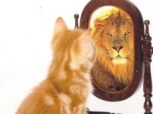 Да отслабнем за да повдигнете самочувствието си