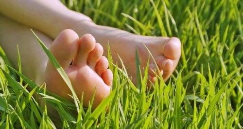 Крака в тревата