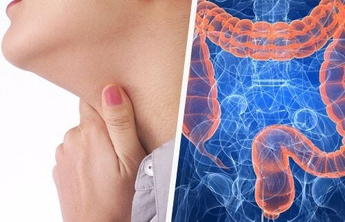 Връзката между проблемите с гърлото и червата