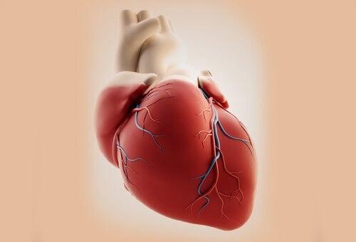 Симптоми на сърдечния удар