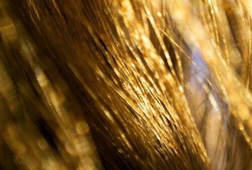 """Кажете """"Сбогом"""" на сухата коса"""