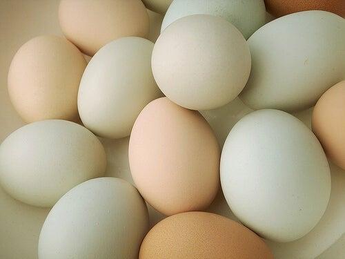 яйцата неизменна съставка на всяка здравословна вечеря