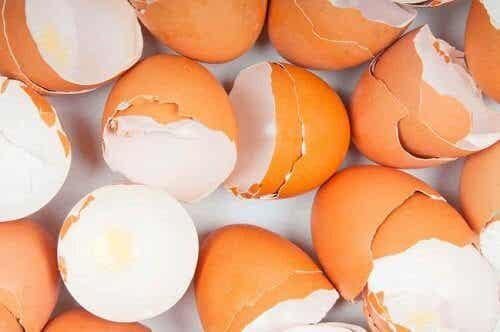 15+ изненадващи приложения на яйчените черупки