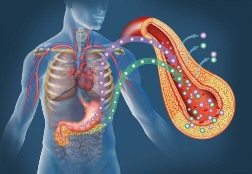 Една от невероятните ползи от овесените ядки е, че спомагат контролирането на кръвната захар.