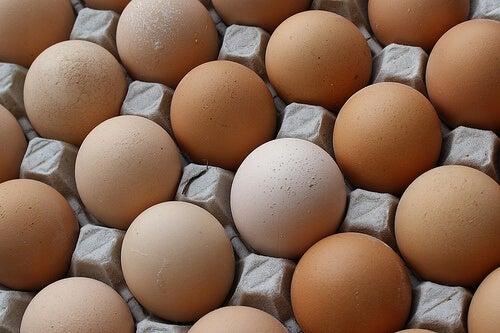Яйцата са полезни за старите хора и бременните жени