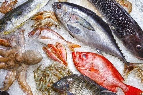 отслабвайте с риба, без да жертвате нищо