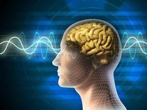 10 заповеди за поддържане на мозъка млад