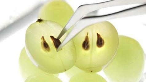 красиви очи с алое вера и гроздови семки