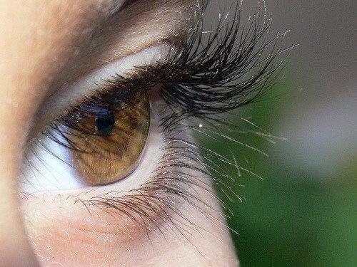 По-дългите помагат за постигането на по-големи очи.