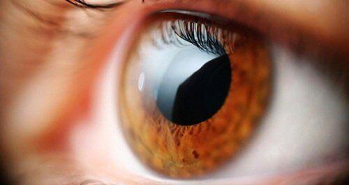 Замъглено зрение - защо се появява?
