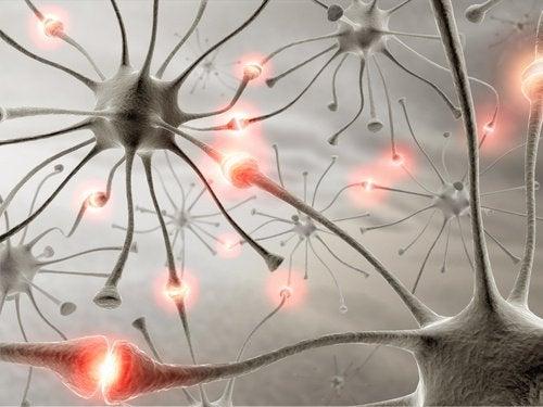 Как вървенето помага на мозъка