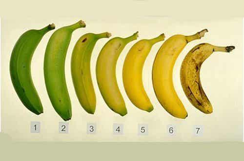 Кой е по-полезният банан: узрeлият или зеленият?