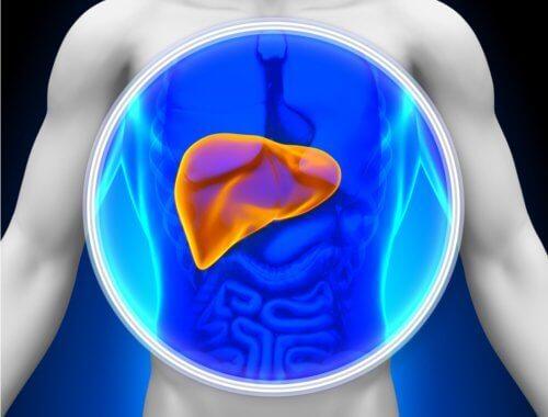Причини, налагащи детоксикация на черния дроб