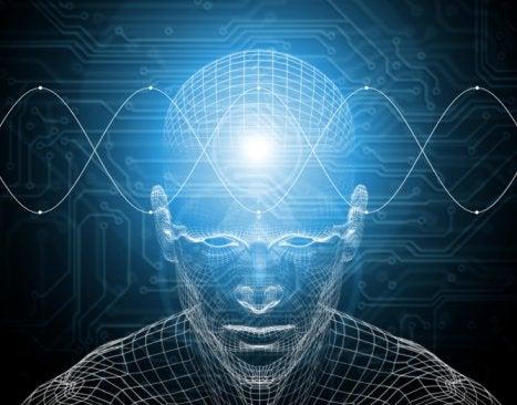 Мазнините в зехтин екстра върджин предпазват от  когнитивни увреждания