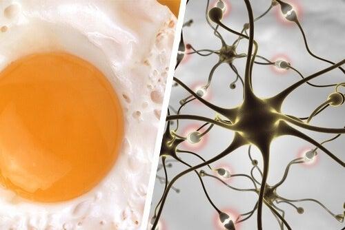Храни и трикове за подобряване на паметта