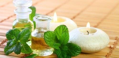Как да приготвим ментово масло у дома