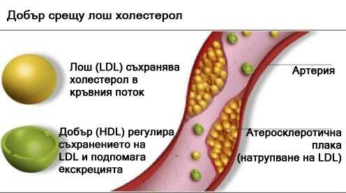 вода от патладжан може да намали холестерола