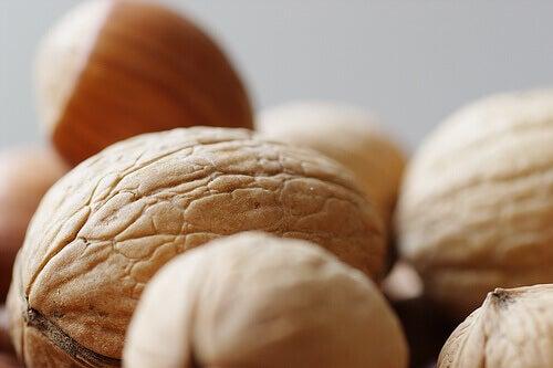Ядките са храни за вътрешен баланс