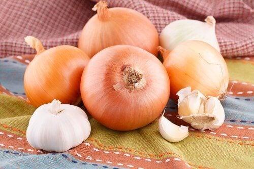 зеленчуци за отслабване - лук и чесън за бърз метаболизъм