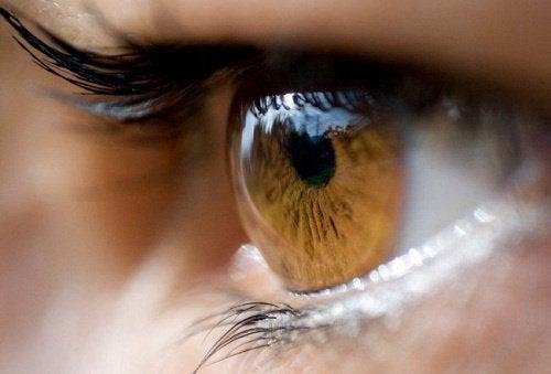 Стресът вреди на очите