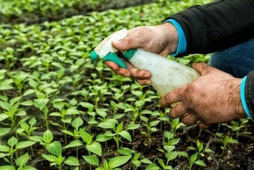 Пестицидите влияят на щитовидната жлеза.