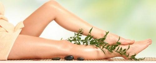 розмарин за подобряване кръвообращението на краката