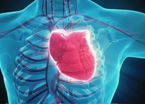 Енергийните напитки водят до сърдечно-съдови проблеми.
