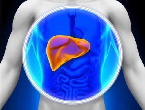 Лечебни растения за детоксикация на черния дроб