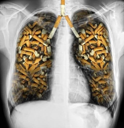 Пушенето краде до 10 години от живота