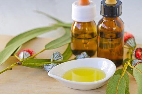 Етерични масла срещу насекомите