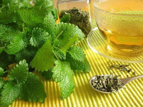 mentov chai