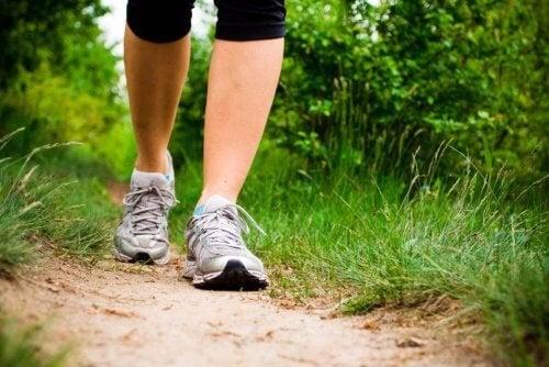 редовни разходки за предотвратяване появата на рак