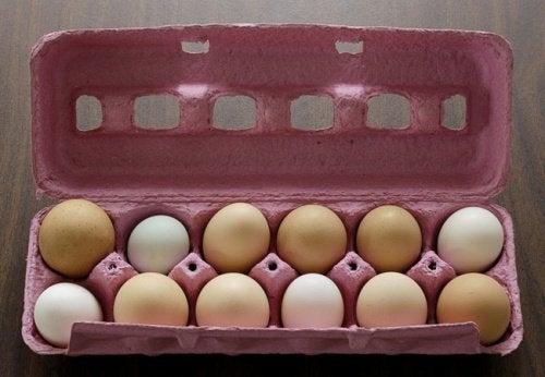 Не хвърляйте храна: запазете по-дълго яйцата пресни