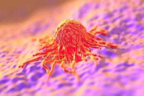 Човешкият папилома вирус се разпространява бързо при отстраняване на окосмяването.