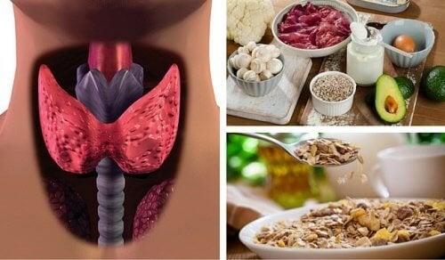 Хипертиреоидизмът - преборете го чрез храна, ускоряваща метаболизма