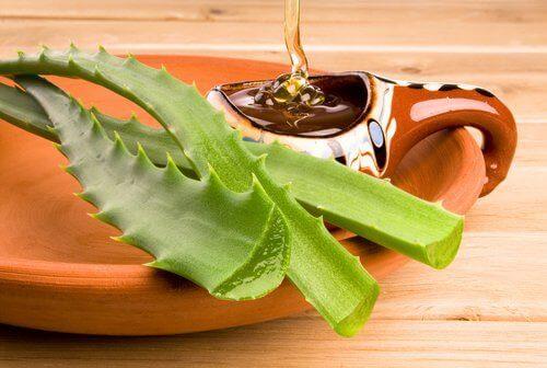 съхраняване на гела от алое с мед