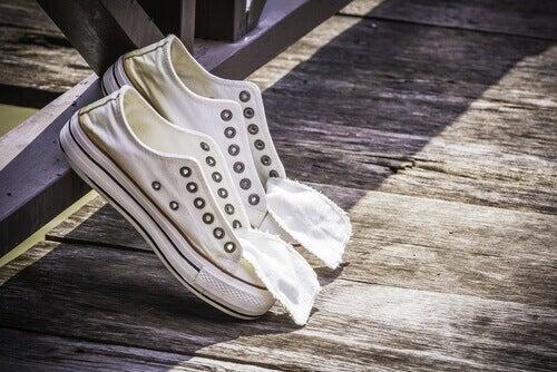 Използване на лука за почистване на обувки