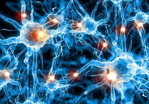 Учените откриха ново лечение за болестта на Алцхаймер